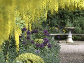 Dorothy-Clive-Garden