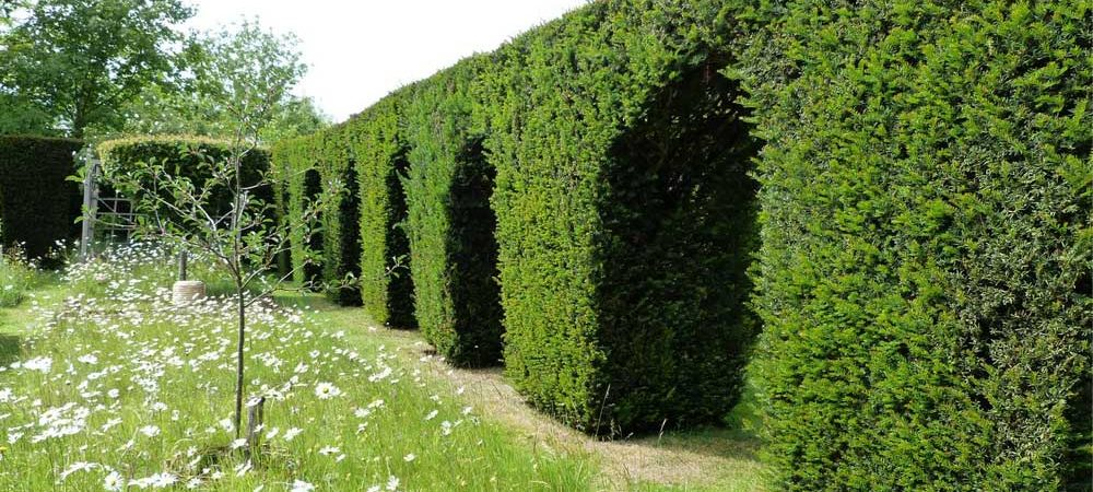 Dower-House-Gardens